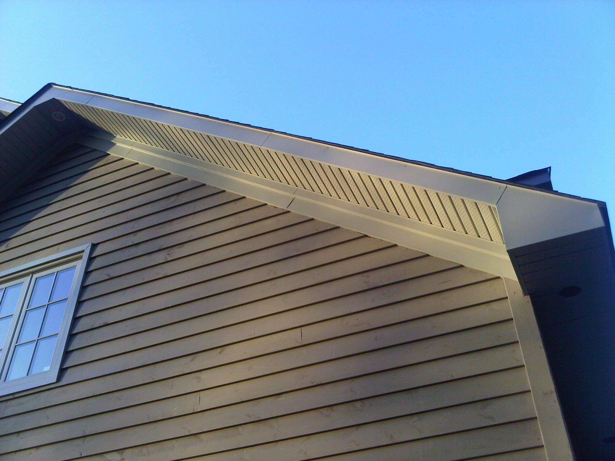 siding and roof